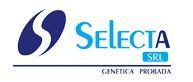 Selecta SRL